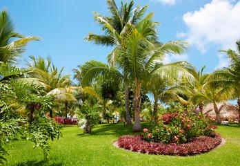 Maintaining Tropical Landscapes in South Florida