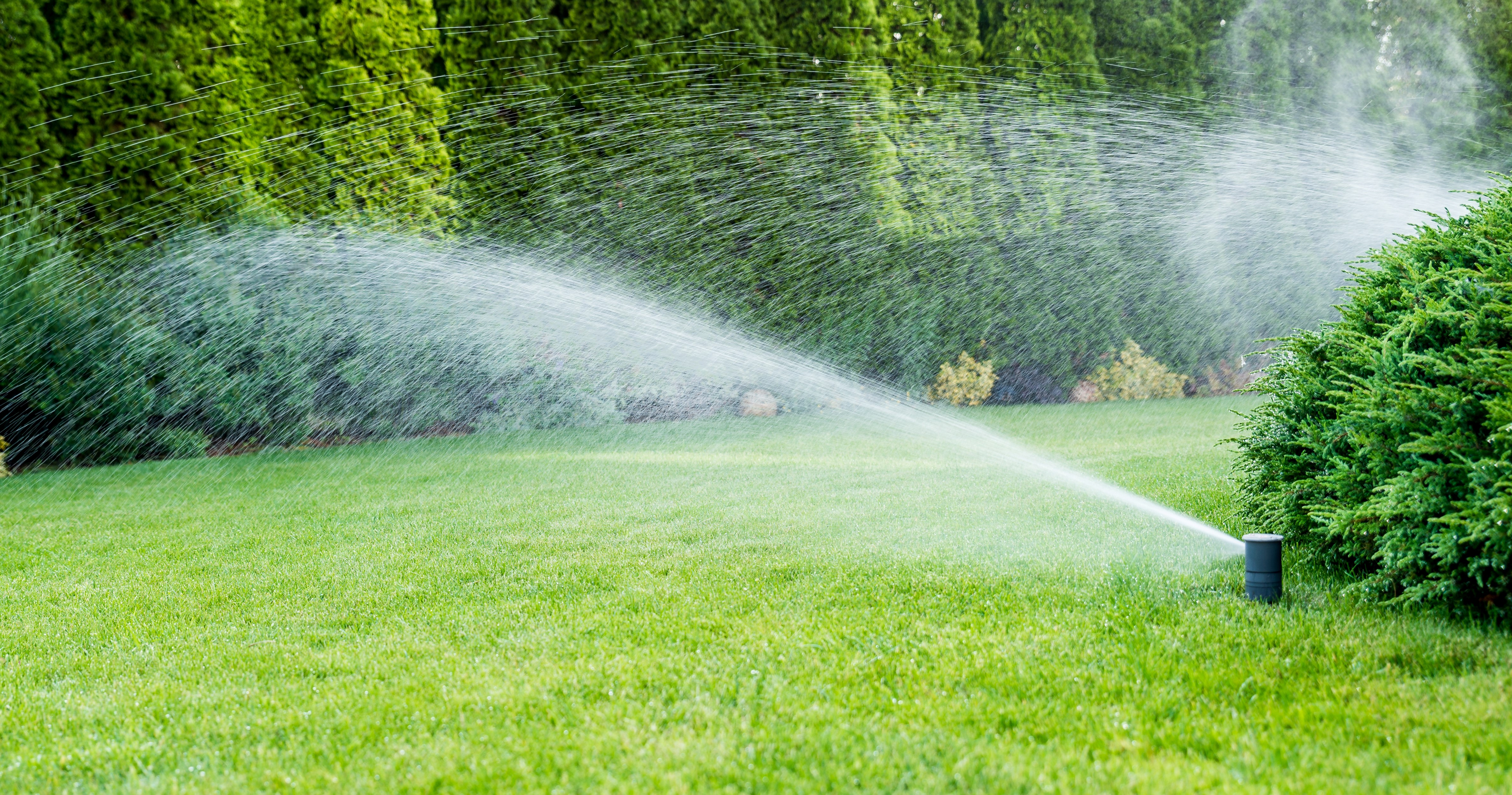 When You Need an Improved Irrigation System