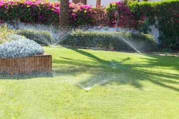7 Major Irrigation Issues for Florida Properties