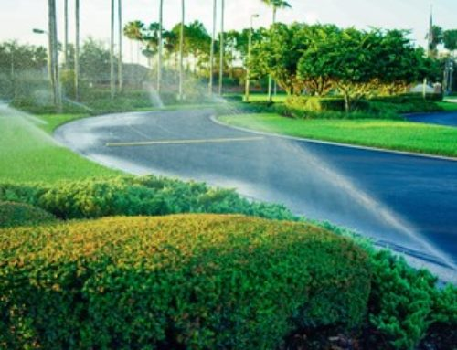 Quality Irrigation Services Are Available Near You
