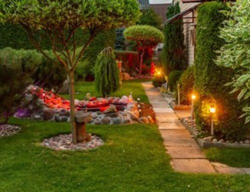 How to Create An Inspiring Landscape with a Variety of Landscape Installation Elements