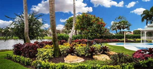 5 Reasons Why Regular Maintenance Is the Key to a Successful Landscape